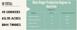 Ginger_01