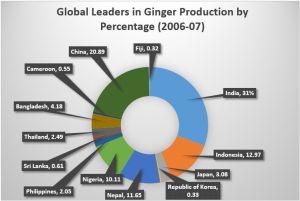 Ginger_02
